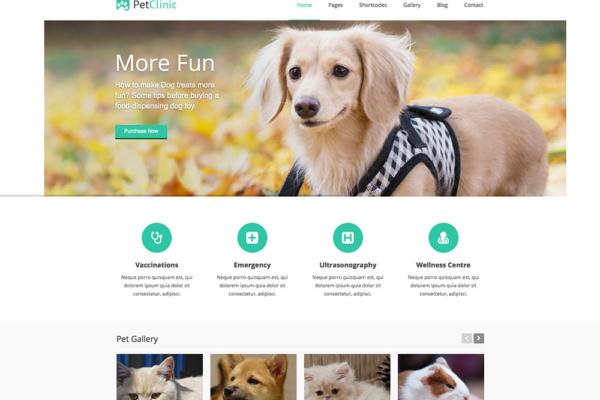 Thiết kế website bán thú cưng chuyên nghiệp, chuẩn SEO